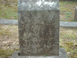 Nicholas James Bayard, Jr