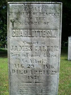 Charlotte S. W. Gallin