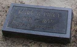 Mary Ann <i>Adams</i> Price