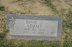 David J. Adams