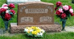Chester Arthur Brizendine
