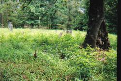 Hines Cemetery
