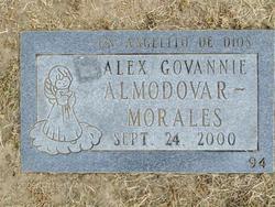 Alex Govannie Almodovar-Morales