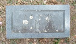 A. F. Burns