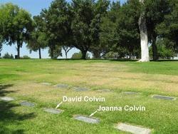 David Orlando Colvin