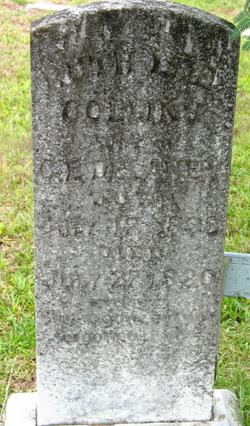 Ruth Lee <i>Collins</i> Delaney