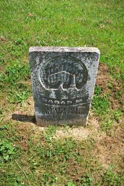Sarah M Whitmer