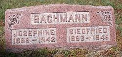 Siegfried Bachman