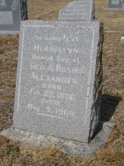 Hermann Alexander