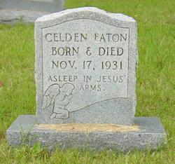 Celdon E. Eaton