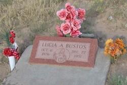 Lucia A. Bustos