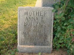 Anna E Boltzius