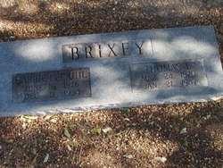 Carrie Lee <i>Uhl</i> Brixey