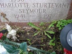 Charlotte <i>Sturtevant</i> Seymour
