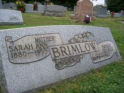 Sarah Ann <i>Cartwright</i> Brimlow