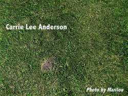 Carrie <i>Lee</i> Anderson