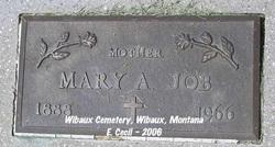 Mary Ann <i>Schall</i> Job