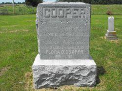 David Edward Cooper, Jr