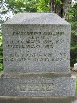 Elizabeth Ann <i>Williams Wilder</i> Draper