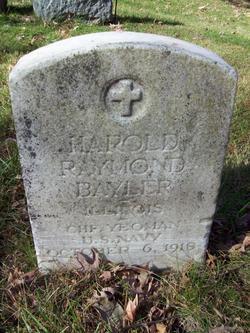 Harold R Bayler