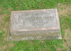 Amanda N. Barry