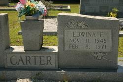 Edwina Carter