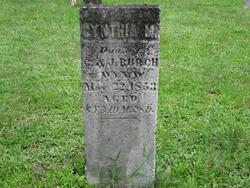 Cynthia Micca Burch