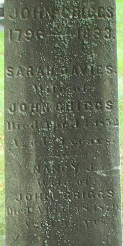 Sarah Davies <i>Williams</i> Griggs