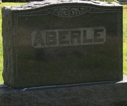 William Johnson Aberle