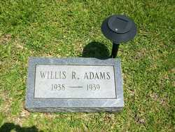 Willis Ray Adams