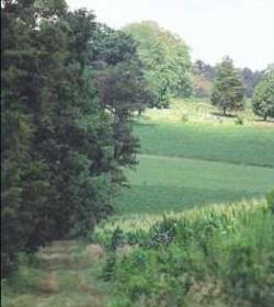 Kilmer Cemetery