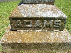 Sarah M <i>Johnson</i> Adams