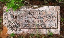 Cynthia Murtice <i>McIntyre</i> James Bucy