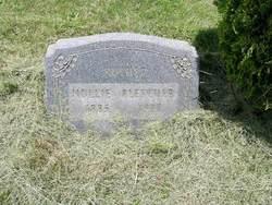 Mary Ann Mollie <i>Hyatt</i> Pletcher