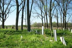 Triplett Cemetery
