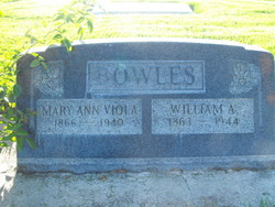 Mary Ann Viola <i>Johnson</i> Bowles
