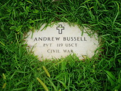 Andrew Bussell