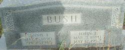 Minnie Izora <i>Chew</i> Bush