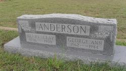 George Ann <i>Reed</i> Anderson