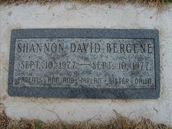 Shannon David Bergene