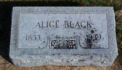 Alice Crittenden <i>Templeton</i> Black