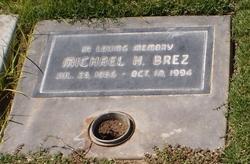 Michael H Brez