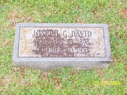 Joseph Goldie David