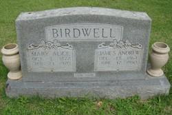 Mary Alice <i>Chandler</i> Birdwell