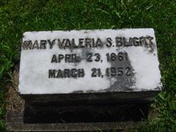 Mary Valeria Blight