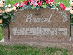 Dovie Brasel