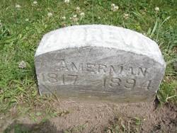 Andrew V Amerman