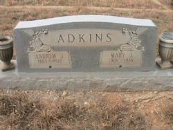 Mary J Adkins