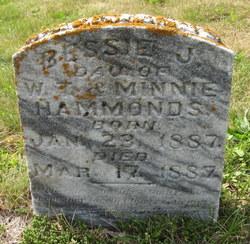 Bessie J Hammonds
