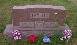 Henry F Taylor